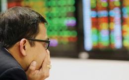 """Một CTCK có cổ phiếu tăng trưởng hơn 260% từ đầu năm bị chủ nợ ra """"tối hậu thư"""" yêu cầu phá sản"""