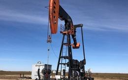 Giá dầu được dự báo sẽ chạm mốc 80USD/thùng ngay trong mùa hè này