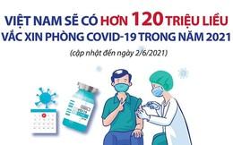 Bộ Y tế: Chi tiết 120 triệu liều vắc xin COVID-19 sẽ có ở Việt Nam trong năm 2021