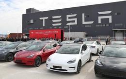 Đơn hàng giảm một nửa tại Trung Quốc, cổ phiếu Tesla bị bán tháo