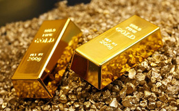 Trải qua tuần trụ vững trên đỉnh, tuần tới giá vàng có tăng tiếp?