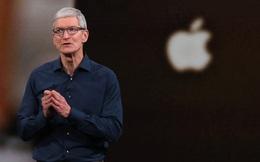 """Nhân viên Apple viết thư phản đối lệnh """"yêu cầu quay trở lại văn phòng làm việc"""" của Tim Cook"""