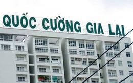 Quốc Cường Gia Lai (QCG) quyết định giải thể Bất động sản Quốc Cường Phước Kiển