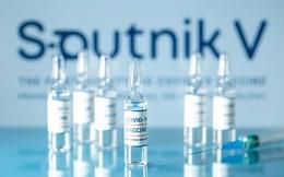 Chính phủ đồng ý cho Tập đoàn T&T đàm phán mua 40 triệu liều vaccine Sputnik của Nga