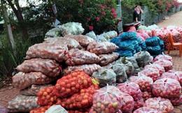Hàng hóa thiết yếu ở TP.HCM đầy đủ, có hiện tượng mua hàng từ siêu thị ra ngoài bán
