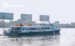 Đề xuất dùng tàu cao tốc vận chuyển hàng nông sản đến TP.HCM