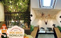 """Quá trình 2 năm phủ xanh căn nhà của một gia đình tại Sài Gòn, biến sân thượng thành """"công viên"""" sau lần giãn cách đầu tiên vì Covid"""