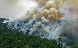 Tin rất buồn: Rừng Amazon chạm đến điểm cực hạn, đang phát thải CO2 còn nhiều hơn khả năng hấp thụ