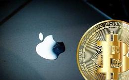 Bắt giữ người đàn ông hack tài khoản Twitter của Apple để lừa đảo Bitcoin