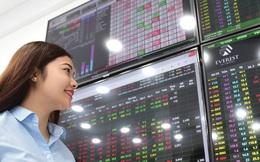 Thị trường tích cực, lợi nhuận nhóm Công ty chứng khoán tăng trưởng gần 160% trong nửa đầu năm 2021