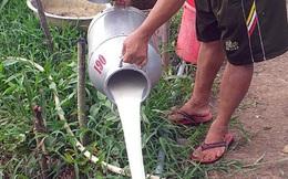 """Hàng loạt doanh nghiệp đồ uống, sữa, nước giải khát """"kêu cứu"""" Bộ Công thương vì """"không phải hàng thiết yếu"""""""