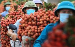 """Từ câu """"mỗi người Việt ăn vài lạng vải"""" đến kỳ tích tiêu thụ vải thiều nội địa vượt xuất khẩu ngay giữa đại dịch"""