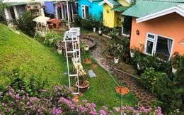 Ngành kinh doanh du lịch điêu đứng, khách đến Đà Lạt, Lâm Đồng giảm 98% so với năm ngoái