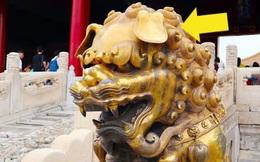 Là hiện thân của quyền lực nhưng đôi sư tử ở cung Càn Thanh, Tử Cấm Thành lại luôn cụp tai hèn nhát - Vì sao vậy?