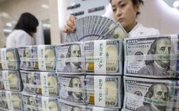 Tỷ giá liên ngân hàng lao dốc, Ngân hàng Nhà nước có thể mua vào tránh VND lên giá mạnh