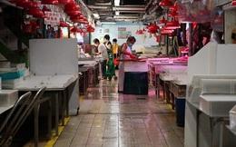 Phát hiện virus gây Covid-19 trên cá đông lạnh nhập từ Indonesia: Chuyên gia Hồng Kông nói sao?