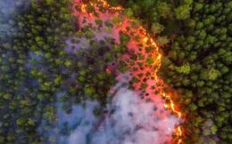Cháy rừng khủng khiếp ở Siberia: Lớn hơn tất cả các đám cháy rừng trên thế giới cộng lại - Lập kỷ lục tồi tệ!