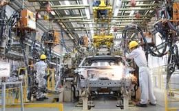Thành Công Motor Việt Nam kiến nghị Chính phủ tái áp dụng quy định mức thu lệ phí trước bạ giảm 50% đối với ô tô sản xuất, lắp ráp trong nước