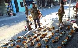 Cách bác tổ trưởng chia rau củ hỗ trợ người dân Đà Nẵng bất ngờ được chia sẻ rầm rồ vì một điều tuy nhỏ nhưng đủ minh chứng cho sự tử tế