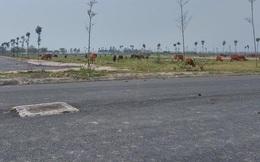 Hà Nội làm rõ tiến độ xử lý hàng trăm dự án bỏ hoang trong tháng 8/2021