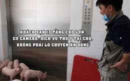 Trung Quốc xây khách sạn 13 tầng dành cho... lợn vì sợ bị nhiễm virus: Có dịch vụ thú y tại chỗ, bữa ăn được chuẩn bị cẩn thận