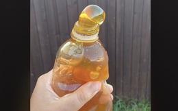 Sự thật đáng sợ phía sau những hũ mật ong đông lạnh đang bùng nổ khắp Tiktok