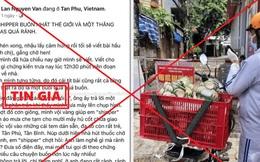 """Xử phạt người đăng tin """"shipper chở tro cốt người mất vì Covid-19 đi khắp Sài Gòn"""" sai sự thật"""