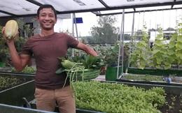 Trồng cây, nuôi gà trên nóc nhà giúp gia đình Sài Gòn sống ung dung những ngày hạn chế đi chợ