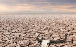 Đất nước đầu tiên trên thế giới rơi vào nạn đói vì biến đổi khí hậu: Tất cả mới chỉ bắt đầu