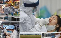 Bức tranh kinh tế Việt Nam 8 tháng đầu năm