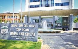 Mất chữ tín với Thaco khi bán ra tới hơn 240 triệu cổ phiếu HAGL Agrico, đổi lại Hoàng Anh Gia Lai được gì?