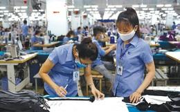 Bất chấp dịch Covid-19, xuất khẩu dệt may Việt Nam đạt gần 23 tỷ USD trong 7 tháng đầu năm 2021