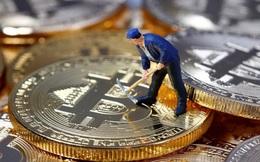 Chuyên gia CNTT của sở cảnh sát bị bắt vì đào trộm bitcoin ngay tại trụ sở chính