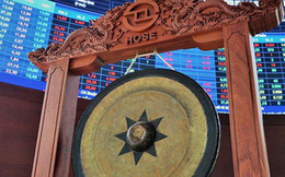 HoSE chuẩn bị tiếp nhận lại hàng loạt cổ phiếu đã tạm chuyển giao dịch sang HNX