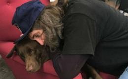 Mỹ: Người đàn ông vô gia cư treo thưởng 10.000 USD để tìm chó cưng bị mất tích