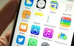 Đôi nam nữ tại Hà Nội nộp hơn 40 tỷ đồng tiền thuế từ viết ứng dụng trên Google, Apple