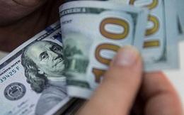 Top 1% người giàu nhất ở Mỹ trốn thuế 163 tỷ USD mỗi năm