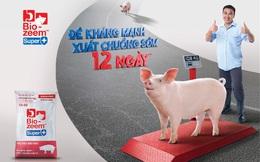Masan MEATLife đứng ở đâu trong ngành thức ăn chăn nuôi với nhiều ông lớn FDI doanh thu hàng tỷ USD