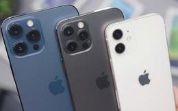 Apple 'bất khả chiến bại' trên thị trường smartphone cao cấp