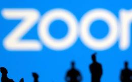 Zoom sẽ tỏa sáng với doanh thu tỷ USD