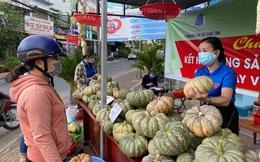 Doanh nghiệp TMĐT Việt Nam 'cầm tay chỉ việc' cho 200.000 thanh niên khởi nghiệp bán nông sản quê mình lên Shopee, Lazada