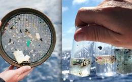 Khi đại dương bão hòa rác thải nhựa, chúng ta sẽ chứng kiến một dạng mưa axit mới: Những hạt nhựa rơi xuống từ bầu trời