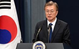 Tổng thống Hàn Quốc Moon Jae In cân nhắc cấm thịt chó