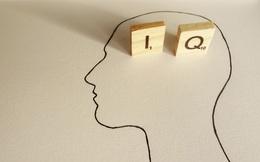 8 đặc điểm thường thấy ở 1 người thông minh: Bạn có bao nhiêu?