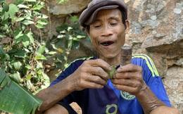 """""""Người rừng"""" Hồ Văn Lang qua đời sau 8 năm từ rừng sâu trở về"""