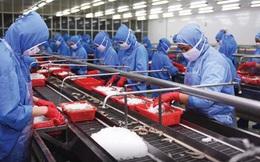 Hiệp hội thủy sản: Nguy cơ chuỗi cung ứng bị đứt gãy, doanh nghiệp phải ngừng hoạt động