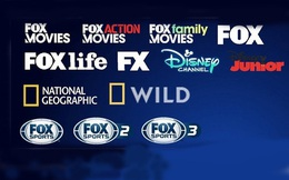 Dừng phát sóng các kênh truyền hình Disney Channel, Fox Movies, Fox Sports… từ 1-10