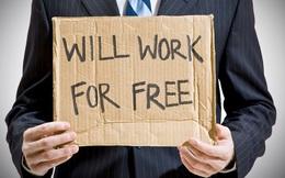 Thực tập không lương hay nô lệ thời hiện đại