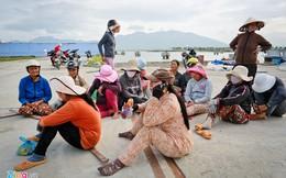 Đội nữ chuyên khiêng cá mập từ Hoàng Sa, Trường Sa