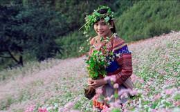 Ngắm Si Ma Cai tuyệt đẹp mùa hoa tam giác mạch